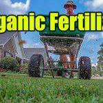 Best Organic Lawn Fertilizer