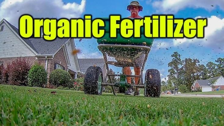 The Best Organic Lawn Fertilizer: Grow Thick, Green Lawn Naturally