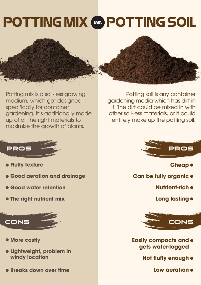 Difference between potting soil and potting mix