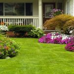 Best Liquid Lawn Fertilizers