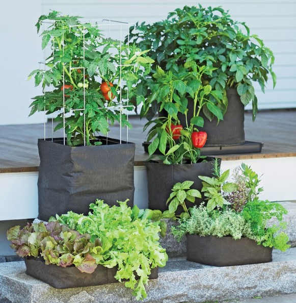 The Best Grow Bags For Outdoor Container Gardening