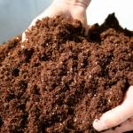 Best Soil Amendments