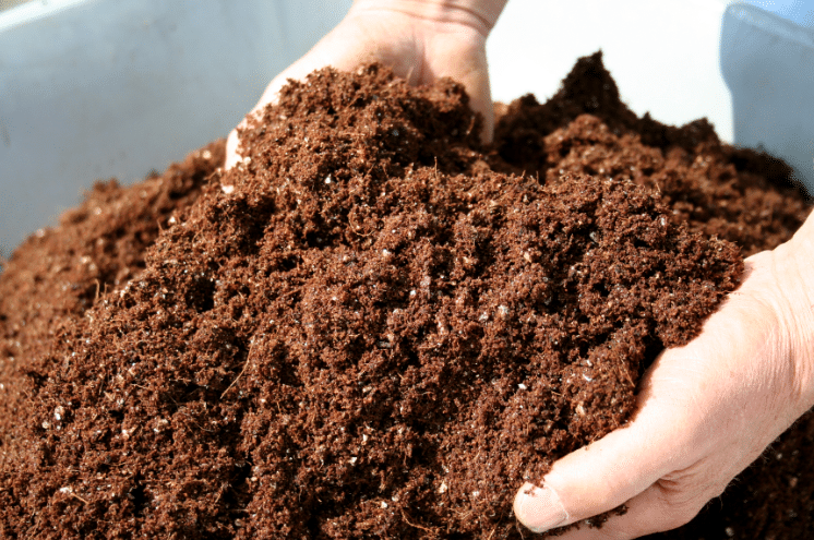 Best Soil Amendments
