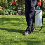 Best Weed Killer Spray & Sprayers for Lawns & Gardens