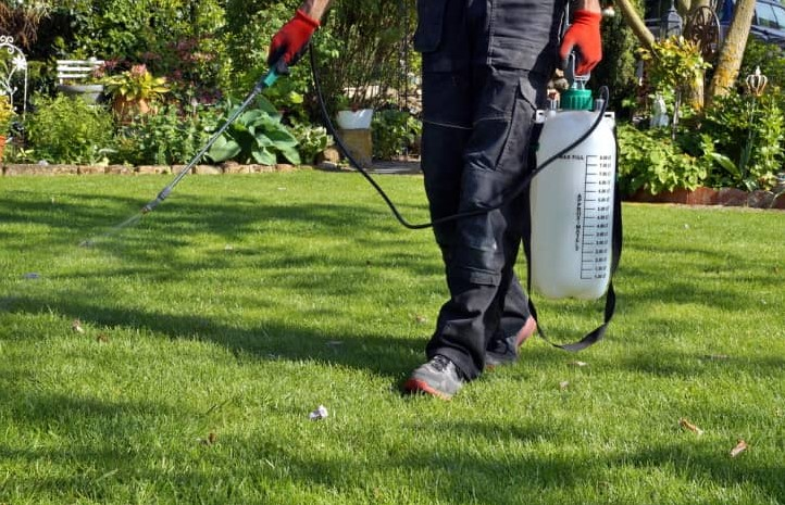 The Best Weed Killer Spray/ Sprayers For Your Lawns & Grass