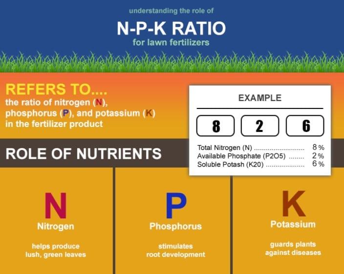 NPK Ratio for Lawn