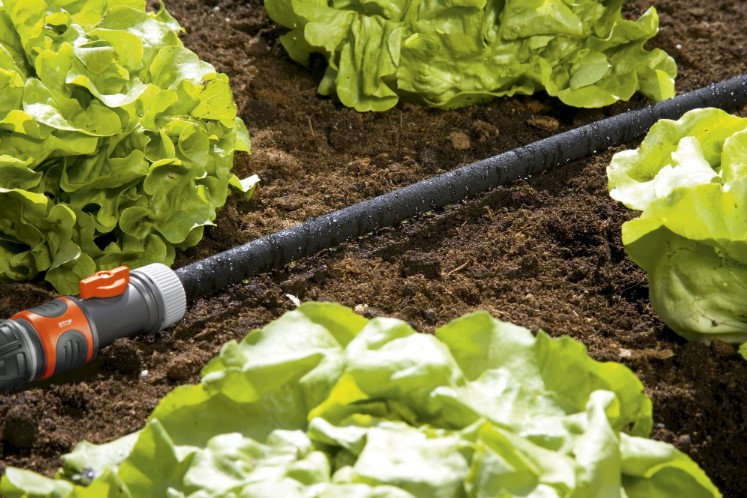 Best Soaker Hose for Gardens, Vegetables, & Trees
