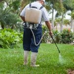 Best Backpack Sprayer for Lawn, Garden & Weed Killer
