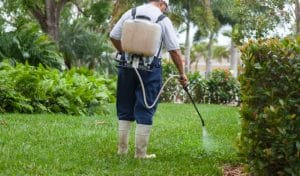Best Backpack Sprayer for Lawn, Garden & Weed Killer