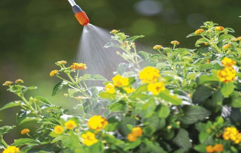 The Best Garden Sprayer For Fertilizer, Weed Killer, or Cleaning