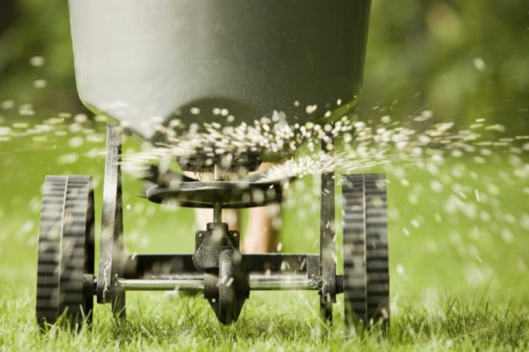 The Best Broadcast Spreader For Your Lawns