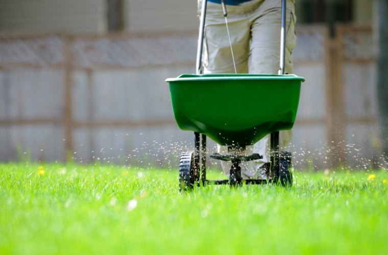 The Best Fertilizer Spreader For Your Lawn & Garden