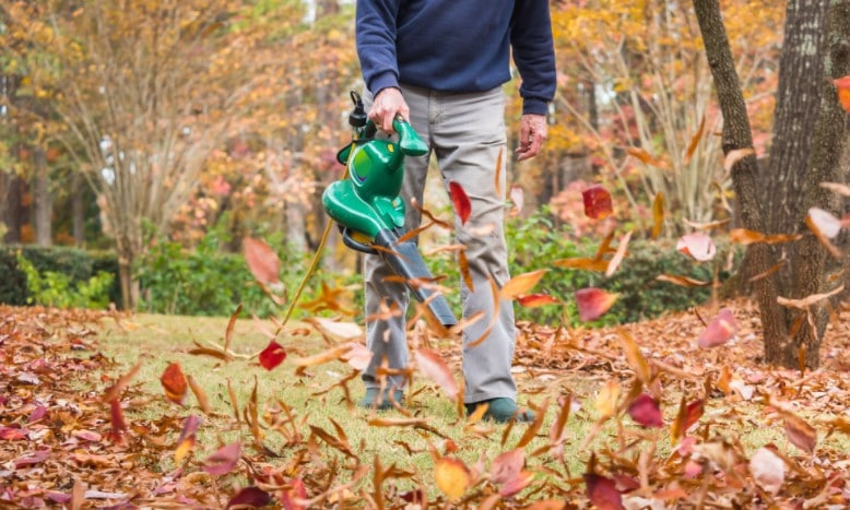 The Best Electric Leaf Blower For Cleaning Your Yard