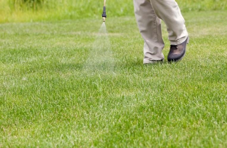 Pre-Emergent Herbicides