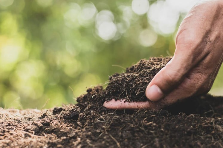 What are Soil Amendments?