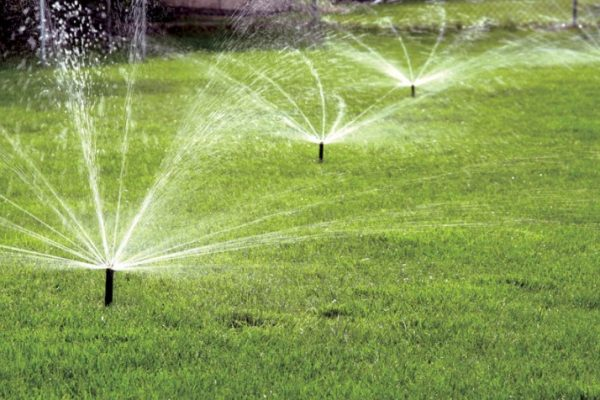 Types of Lawn Sprinklers That You Need to Know