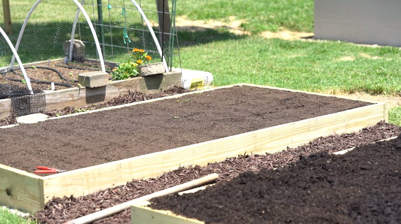 The Soil You Need for a Raised Garden Bed