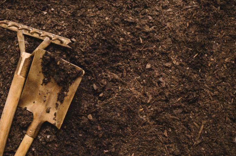 Amending the Soil