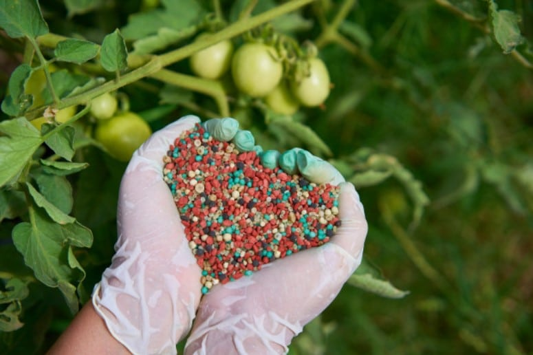 What Is Synthetic Fertilizer?