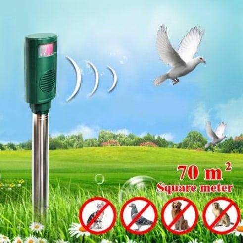 Bird repellent noise