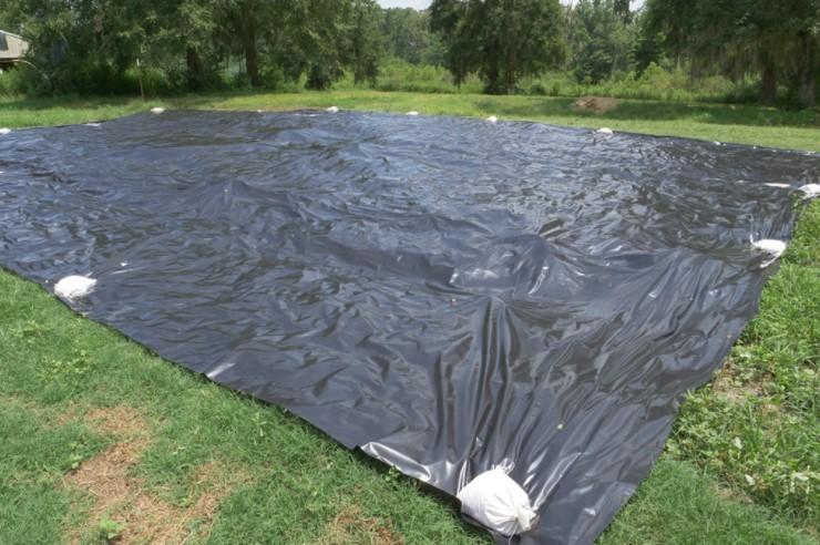 Using black plastic to kill weeds