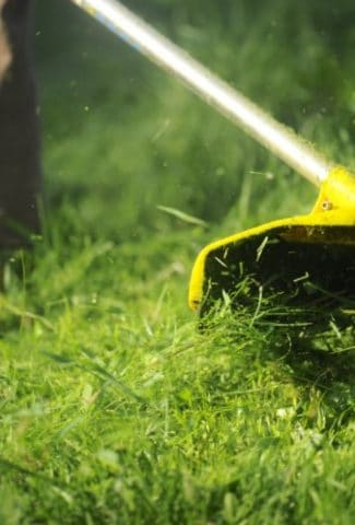 The 10 Best Battery Powered Weed Eater for Yards & Lawns