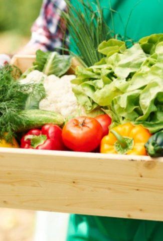 10 Fast Growing Vegetables in Pots