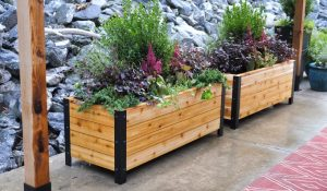 How Deep Does a Planter Box Need to be for Vegetables?