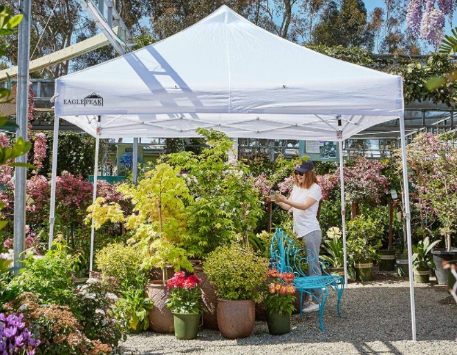 canopy tent to shade plant