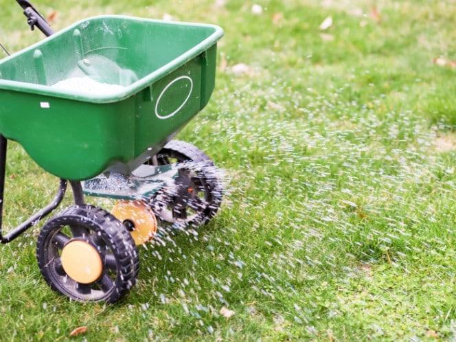 granular fertilizer for lawns
