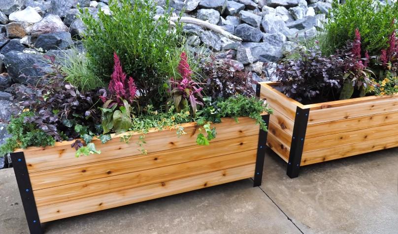 Grow tips for planter box