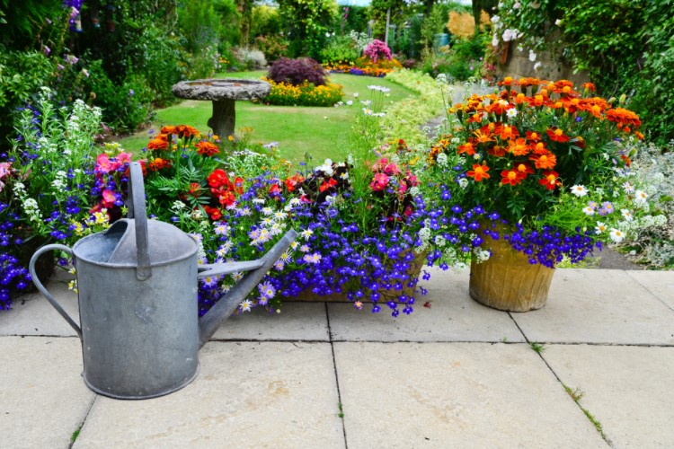 Using large container pots to make garden look nice
