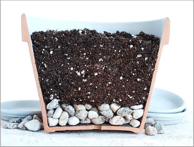 What to Put in Bottom of Planter for Drainage?