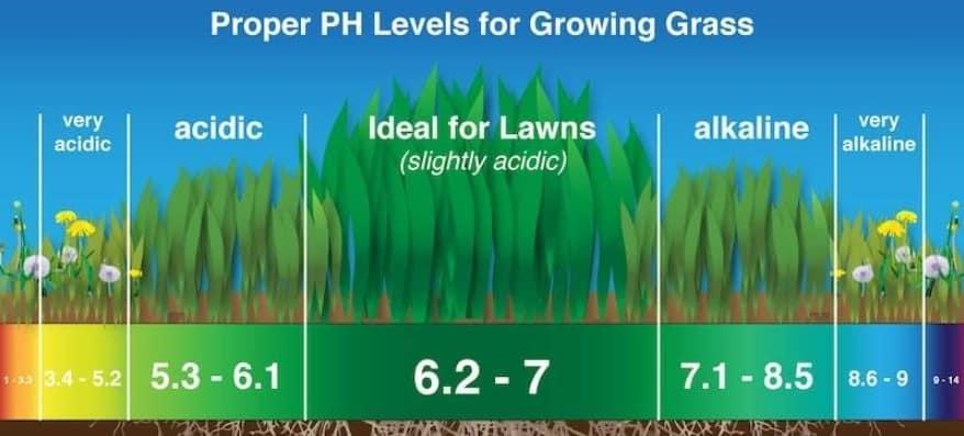 Soil pH for lawns